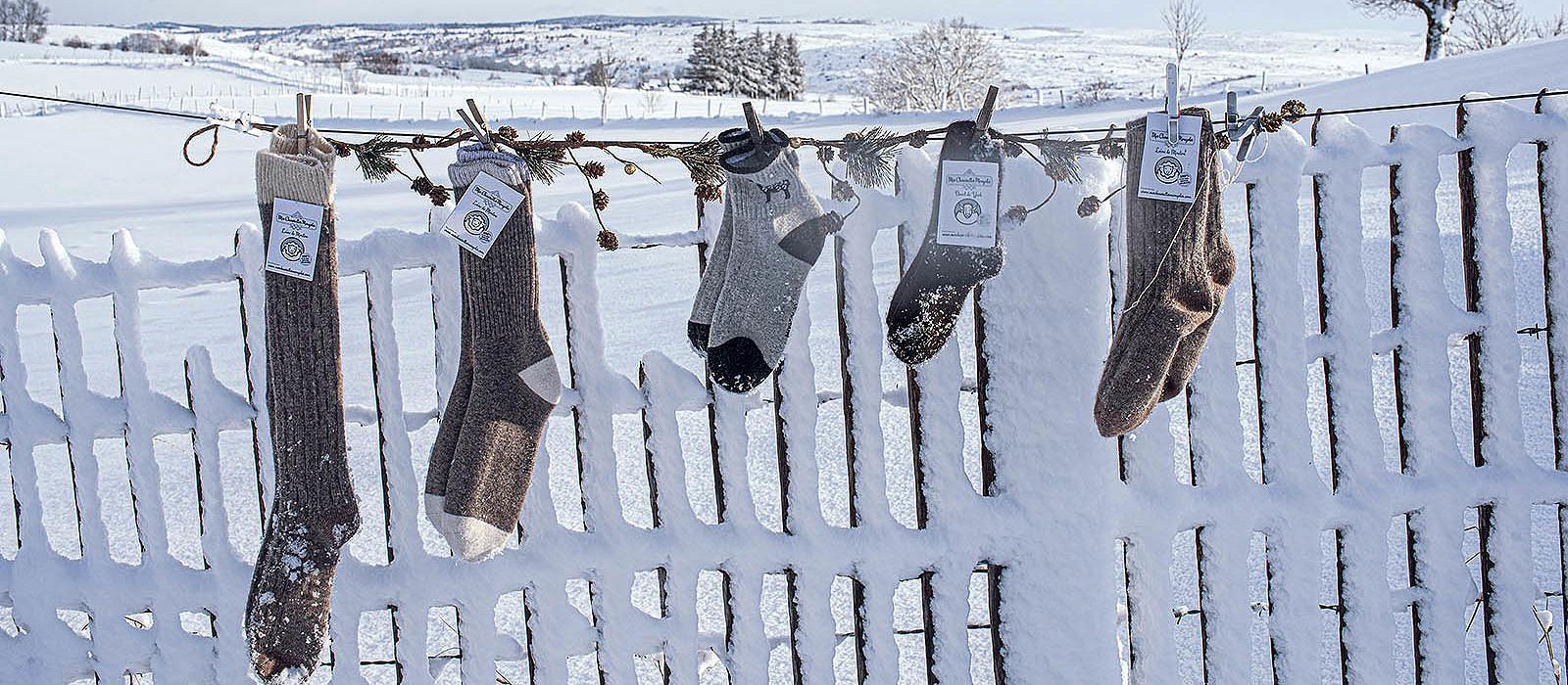Meilleurs vœux 2021 - Équipe Mes chaussettes mongoles